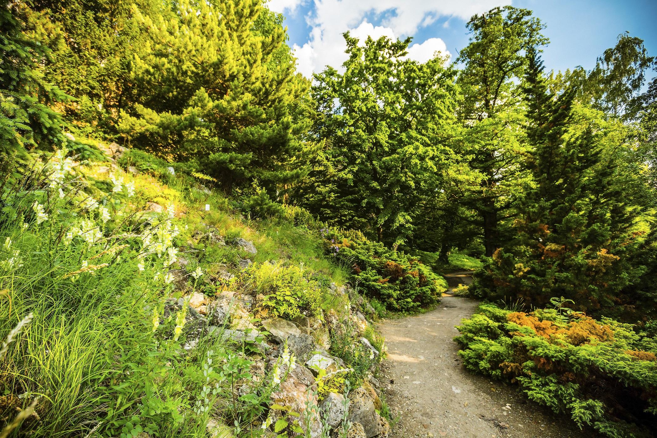 Botanischer Garten Der Naturkundlichen Fakultät Der
